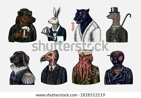 Grizzly Bear with a beer mug. Octopus sailor and Hare or Rabbit waiter. Dog officer and bird. Black panther and Bee biker. Japanese text means: karate. Fashion animal character. Hand drawn sketch.