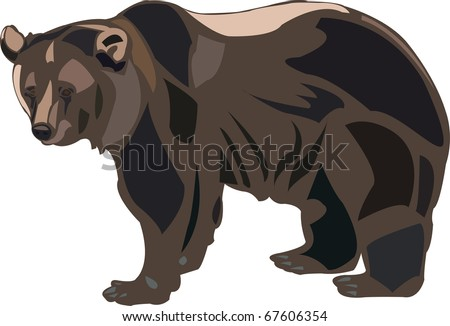 Grizzly bears are the largest predators of American
