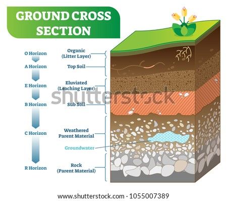 ground cross section vector