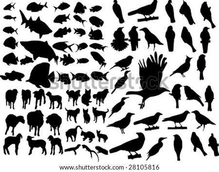 Group Of Animals Stock Vector 28105816 : Shutterstock