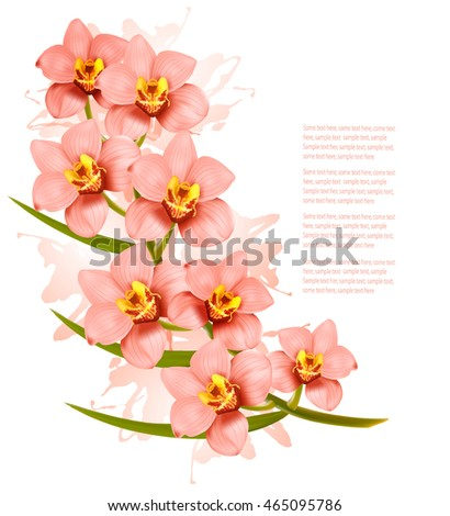 group of beautiful pink orchid