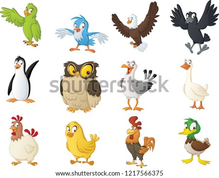 Group of cartoon birds. Vector illustration of funny happy animals.
