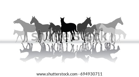 group of isolated black and