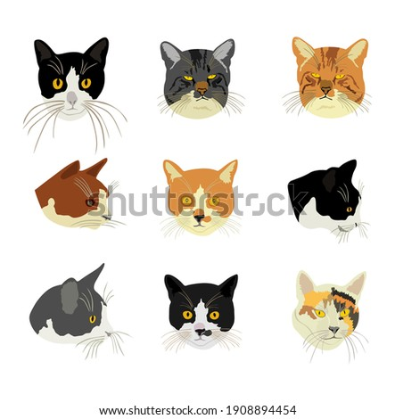 group of many cats face vector