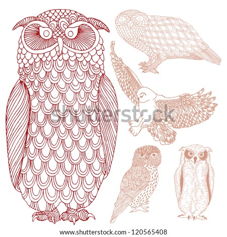 Group of owls