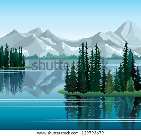 group of pine trees reflected
