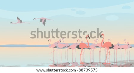 Group of pink flamingos on the bay - stock vector