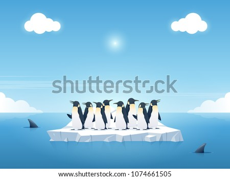 group of the penguins on a