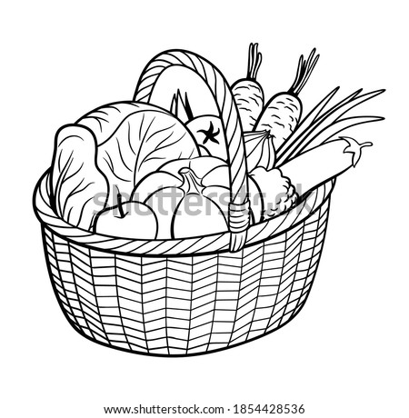 Group of vegetables in basket. Outline black and white vector illustration. Pumpkin, cabbage, eggplant, carrot, onion, tomato, apple