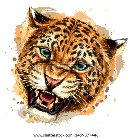 growling leopard color  hand