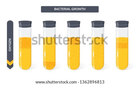 Growth of bacteria colony in the culture medium in the glass vial from the amount of oxygen. Microbiology vector concept.  Stok fotoğraf ©