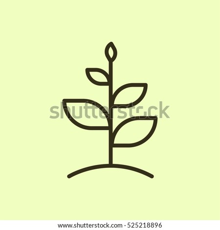 growth plant minimalistic flat