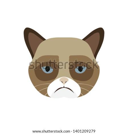 Grumpy cat in flat design, flat illustration