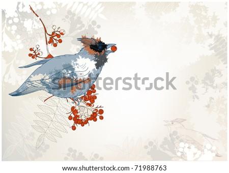 grunge background with a jay bird