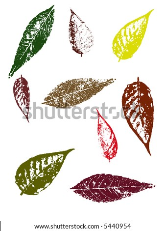 Grunge elements - Autumn Leaves II.   Highly Detailed vector grunge elements