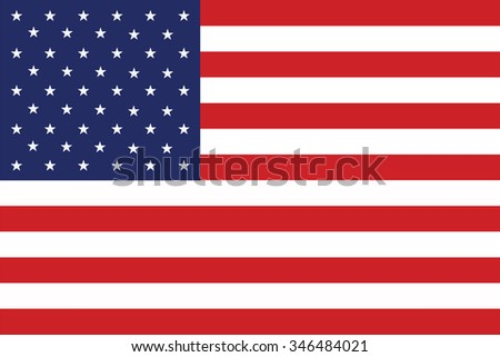 Grunge USA flag.American flag vector template. #346484021