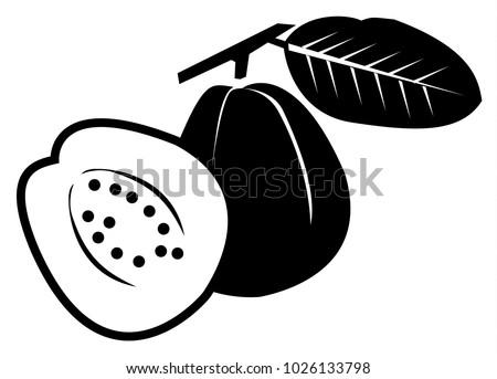 Guava Black Icon On White Background