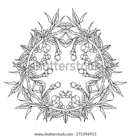 Guava Flower Tropical Floral Vector Design Wreath Frame Mandala Adult Coloring Page For Grown