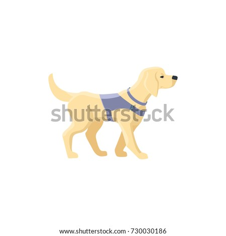 guide dog  specially trained