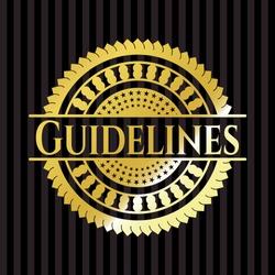 Guidelines gold shiny emblem. Vector Illustration. Detailed.