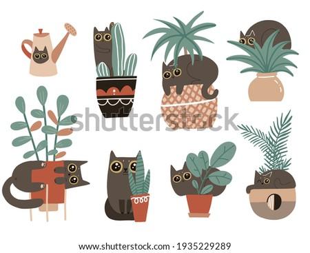 guilty cat characters set cute