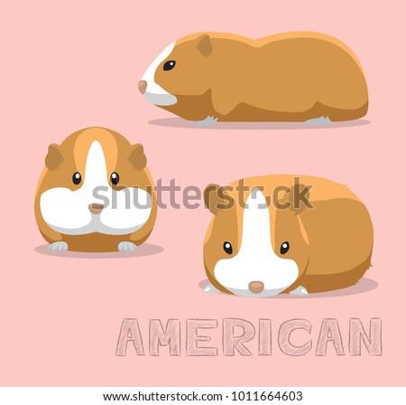 guinea pig american cartoon