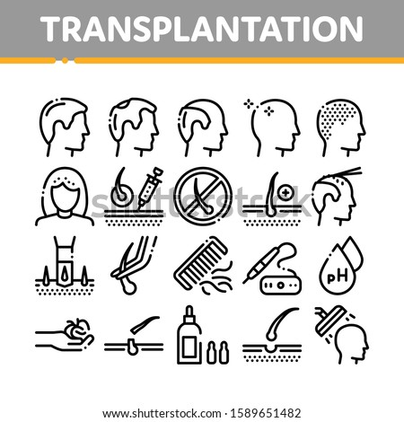 Hair Transplantation Collection Icons Set Vector Thin Line. Balding And Baldness Man Head, Shampoo And Medicine In Bottle Transplantation Concept Linear Pictograms. Monochrome Contour Illustrations