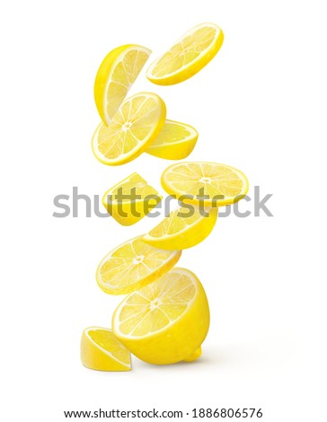 Half lemon with a slice and falling flying slices on a white background. vector illustration