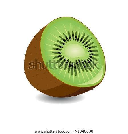 Half of kiwi on a white background. Vector illustration