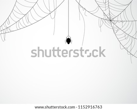 Halloween background design with black spider and torn web #1152916763