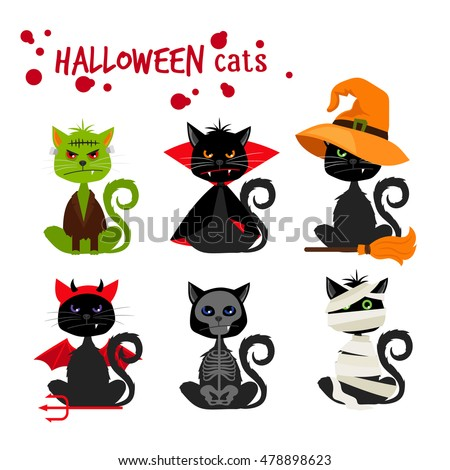 halloween black cat fashion