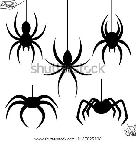 Halloween celebration  stencil spider black