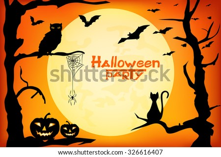 halloween  design   witch