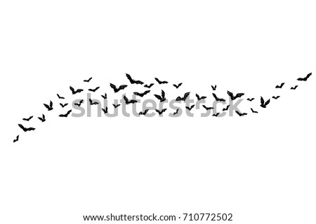 Halloween flying bats. Decoration element from scattered silhouettes. Horizontal divider
