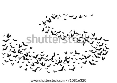 Halloween flying bats. Decoration element from scattered silhouettes.  Swirl wavy path