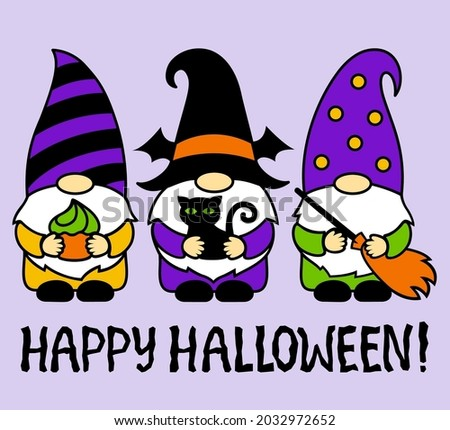 halloween gnomes with black cat