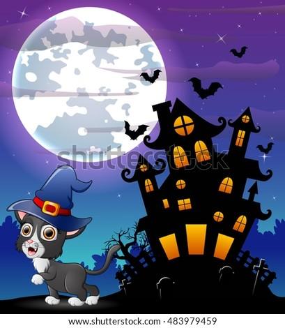 halloween grey kitten wearing