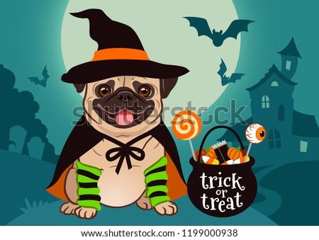 halloween pug dog dressed as