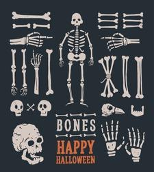 Halloween. Set of cartoon skulls and bones. Vector illustration.