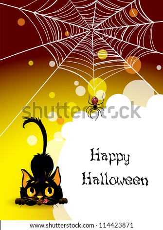 Halloween spider web and black cat background.