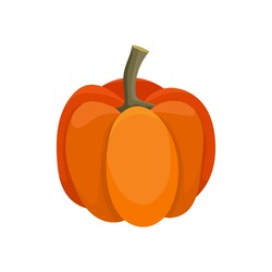 Halloween vector Illustration in cartoon style with ripe fresh orange pumpkin Isolated on white backdrop. organic bright gourd, autumn design template, Eco food concept, graphic design element