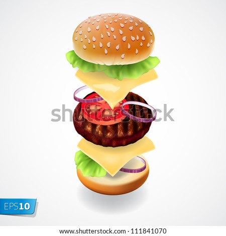 hamburger   the view of every