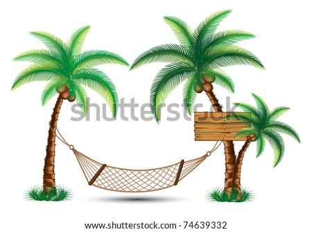 hammock under the palm trees