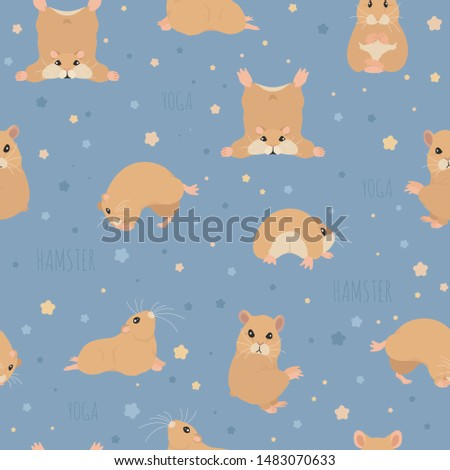 hamsters yoga poses and