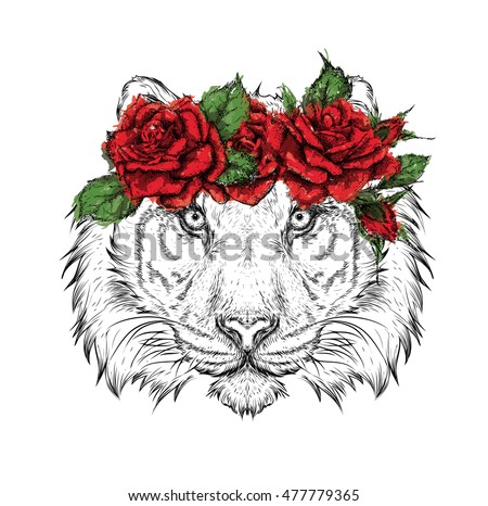 hand draw portrait of tiger