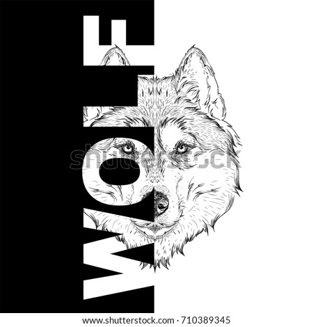 Hand draw wolf portrait. It may be used for design of bag, postcard and poster. Vector illustration