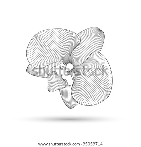 Hand-drawing abstract floral background. Vector flower orchid. Element for design.