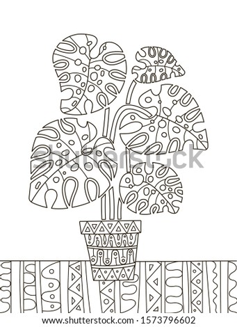 Hand drawing coloring book for children and adults. A beautiful pattern with small details for creativity. Antistress decor still life with monstera houseplant.