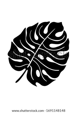 Hand drawing silhouette of tropical leaf monstera deliciosa isolated on white background. Suitable for printing wall art, logo, package