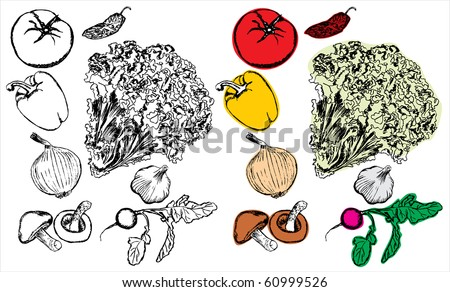 Hand drawing vegetables collection